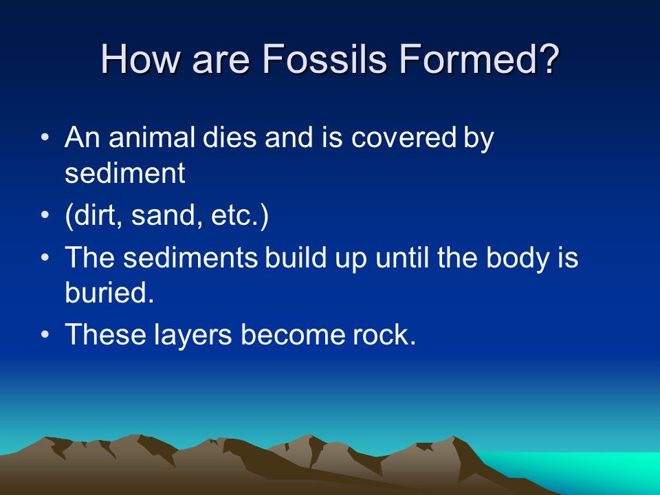 How are Fossils Formed An animal dies and is covered by sediment