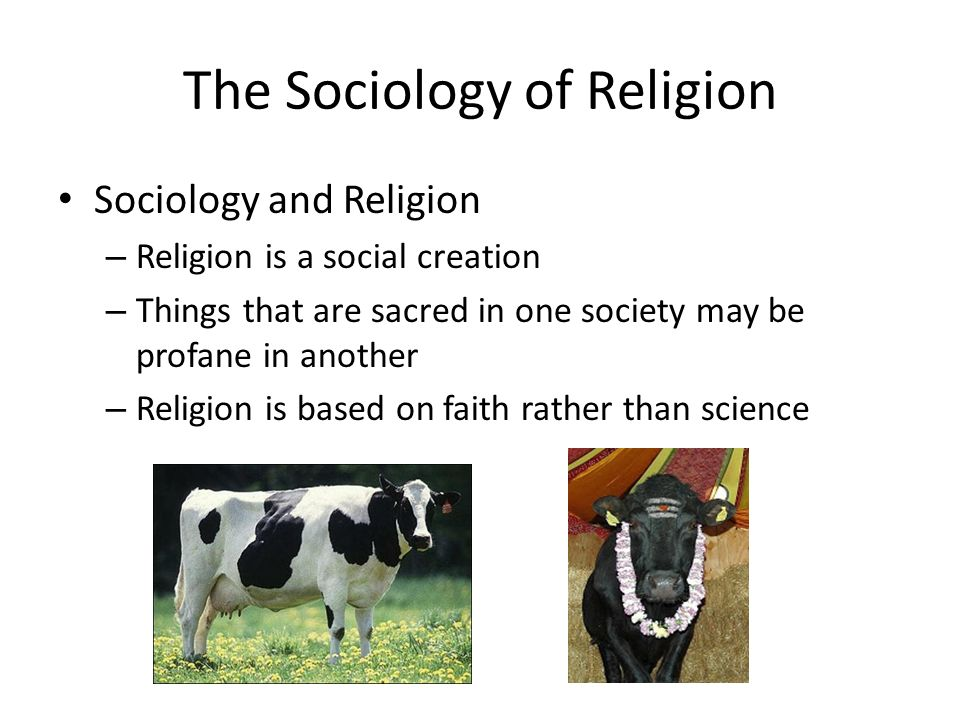 sociology in religion How can the answer be improved.
