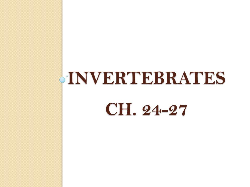 INVERTEBRATES Ch. 24-27