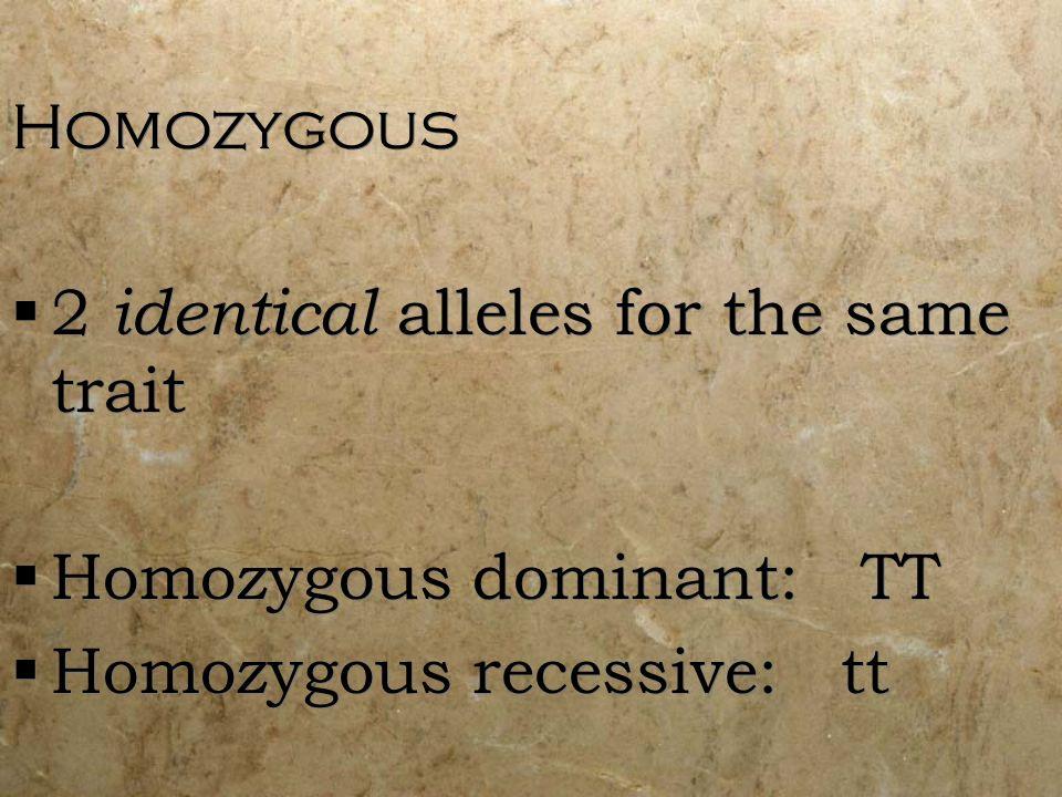 Homozygous 2 identical alleles for the same trait.