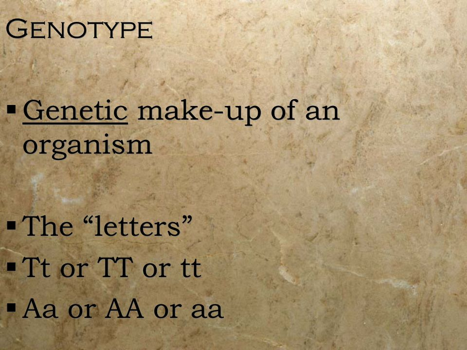 Genotype Genetic make-up of an organism The letters Tt or TT or tt Aa or AA or aa