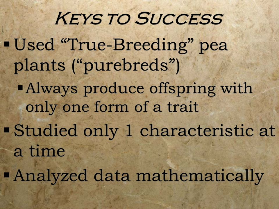 Keys to Success Used True-Breeding pea plants ( purebreds )