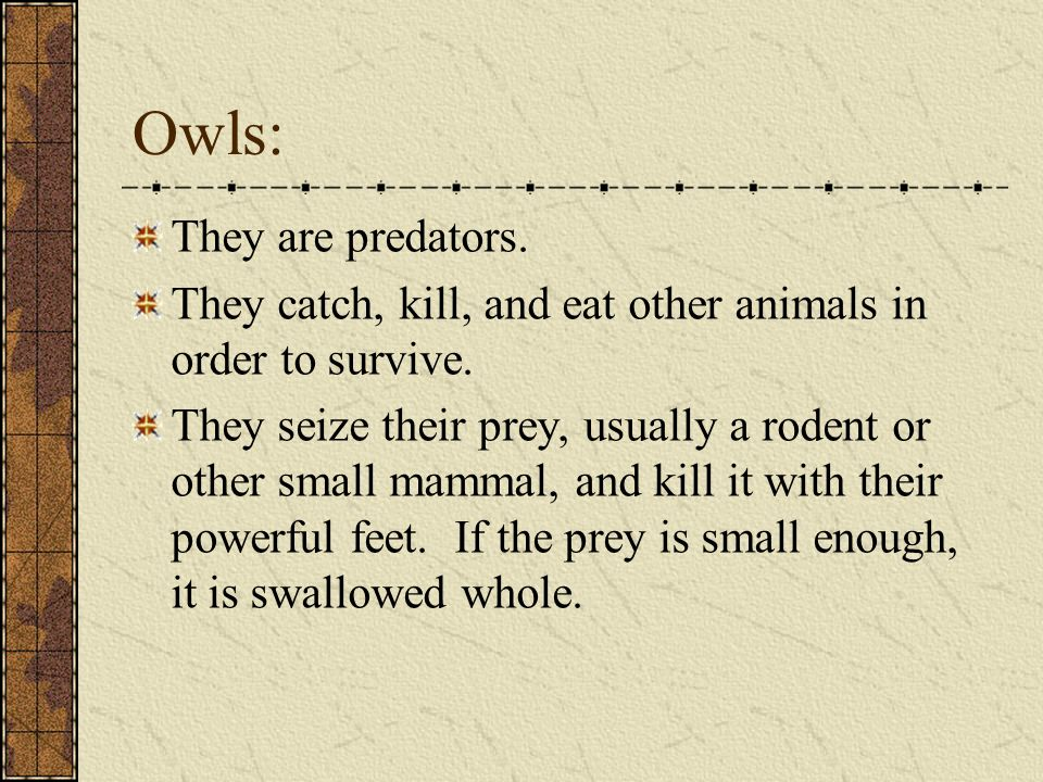 Owls: They are predators.