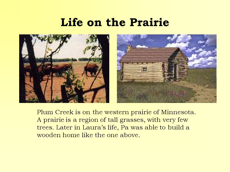 Life on the Prairie