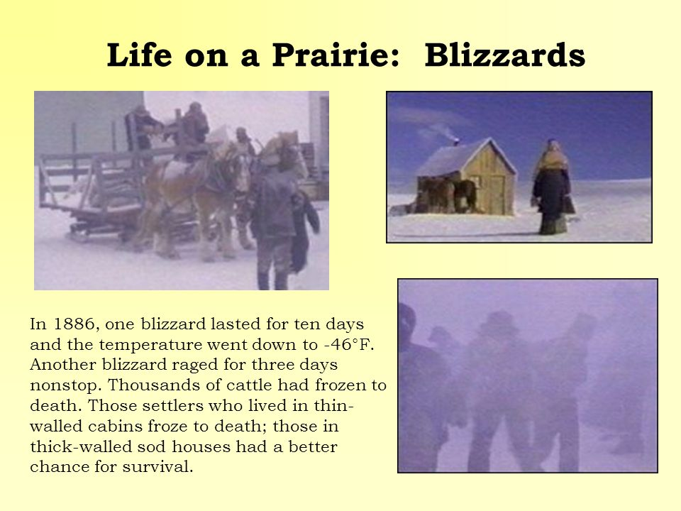 Life on a Prairie: Blizzards