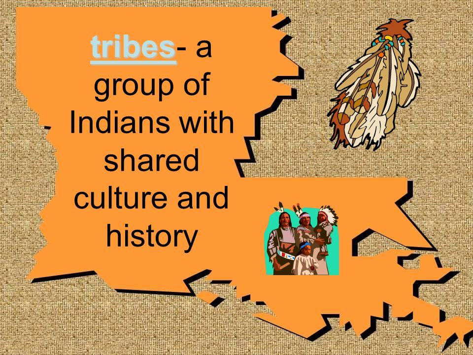 tribes- a group of Indians with shared culture and history