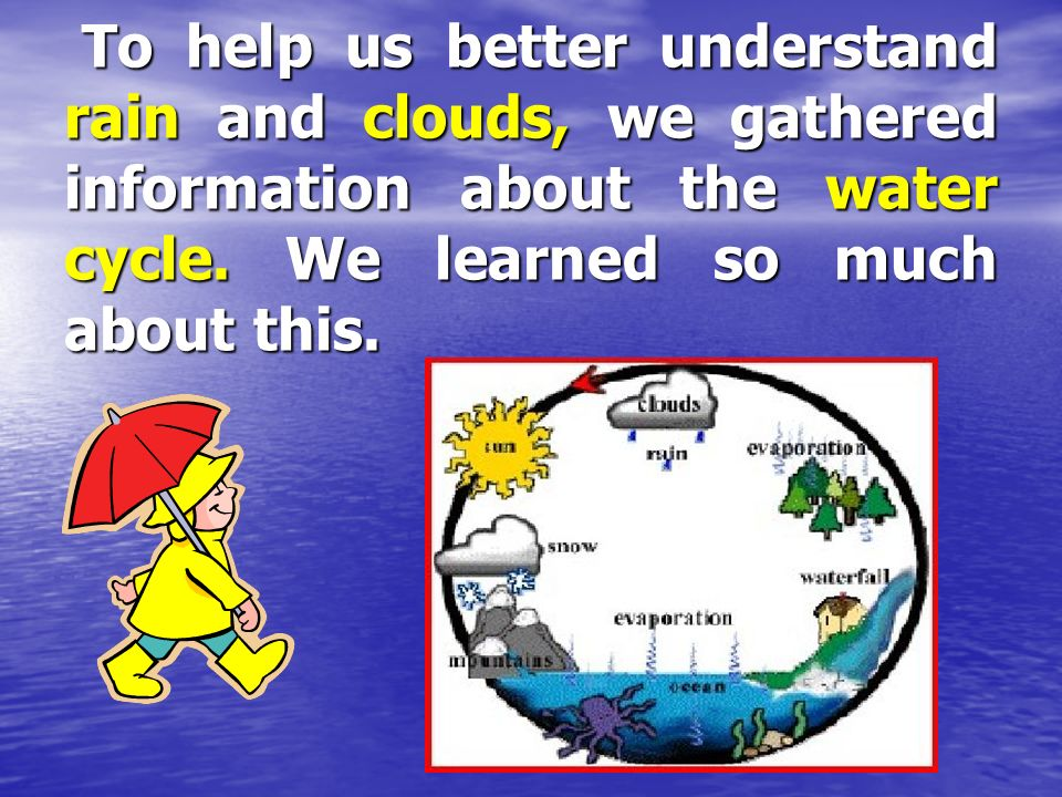 To help us better understand rain and clouds, we gathered information about the water cycle.