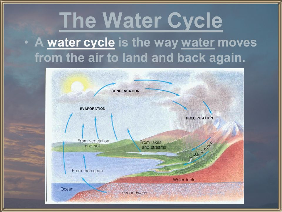 The Water Cycle A water cycle is the way water moves from the air to land and back again.