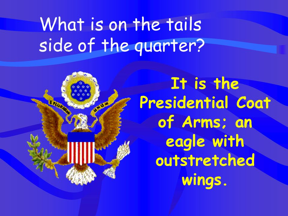 It is the Presidential Coat of Arms; an eagle with outstretched wings.