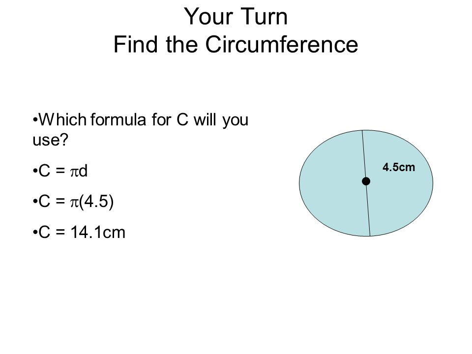 Your Turn Find the Circumference