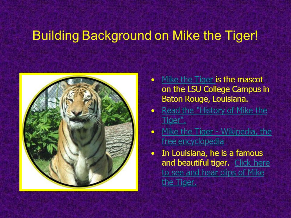 Building Background on Mike the Tiger!