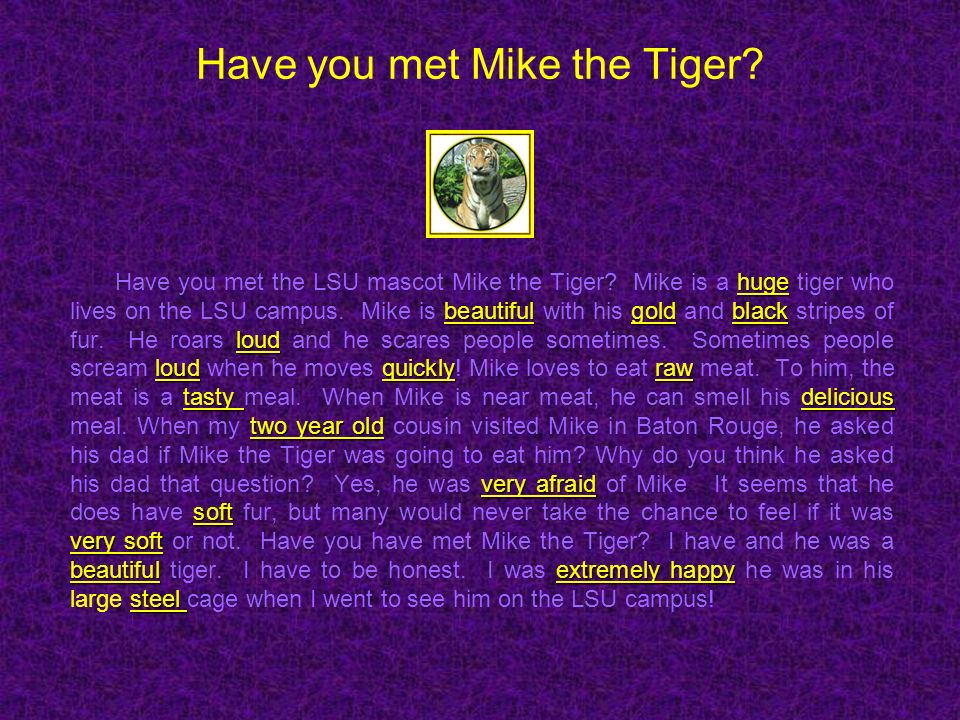Have you met Mike the Tiger