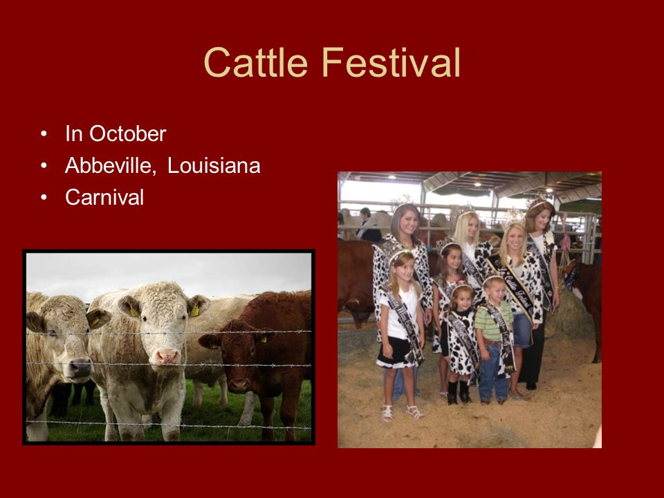 Cattle Festival In October Abbeville, Louisiana Carnival