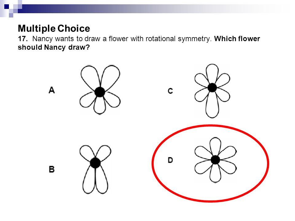 Multiple Choice 17. Nancy wants to draw a flower with rotational symmetry.