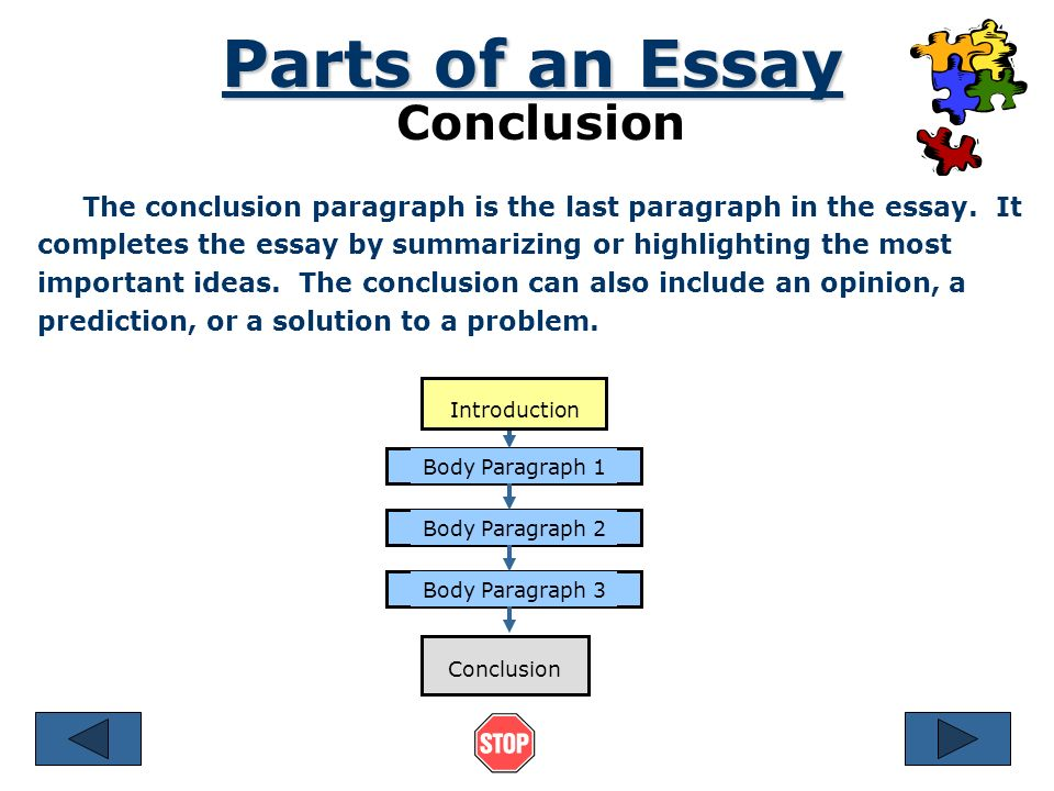 3 Parts Of An Essay