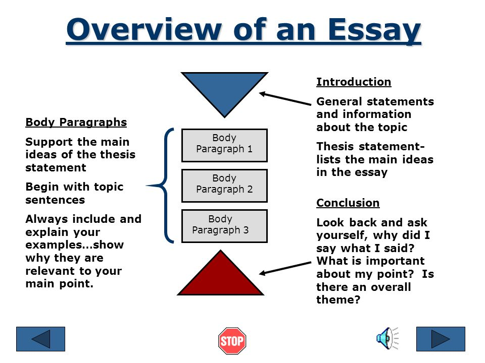 general statement essay examples