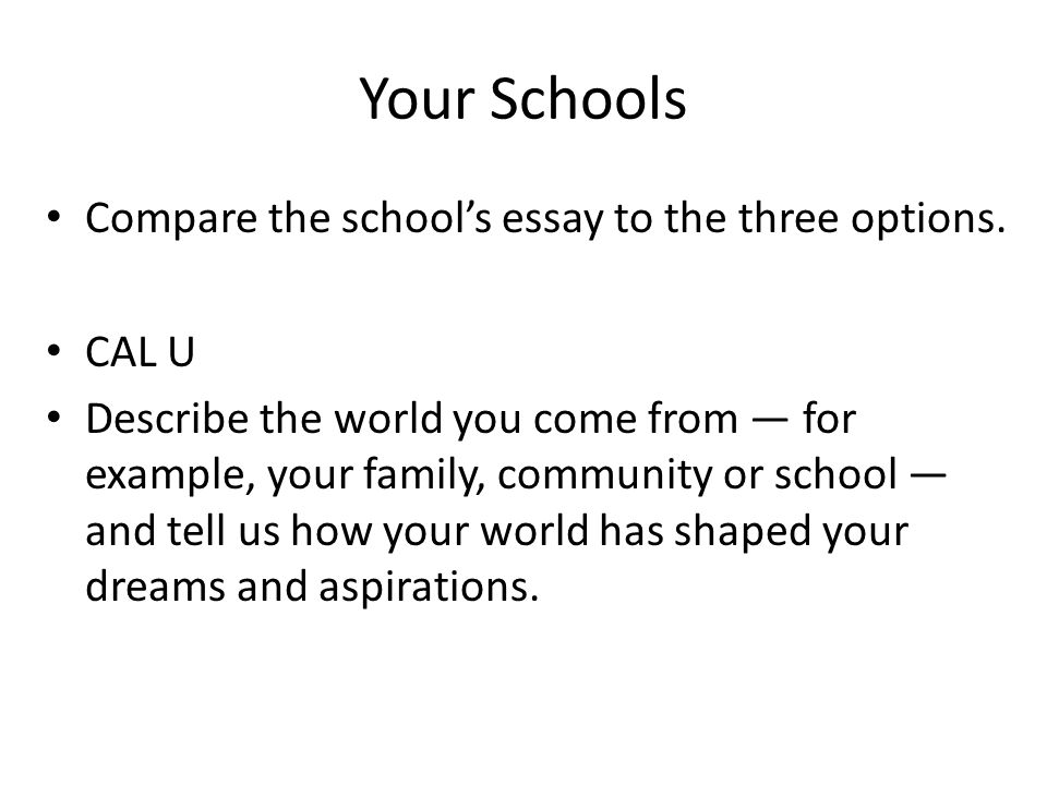 Essay About Your School