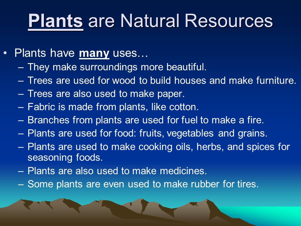 Plants are Natural Resources