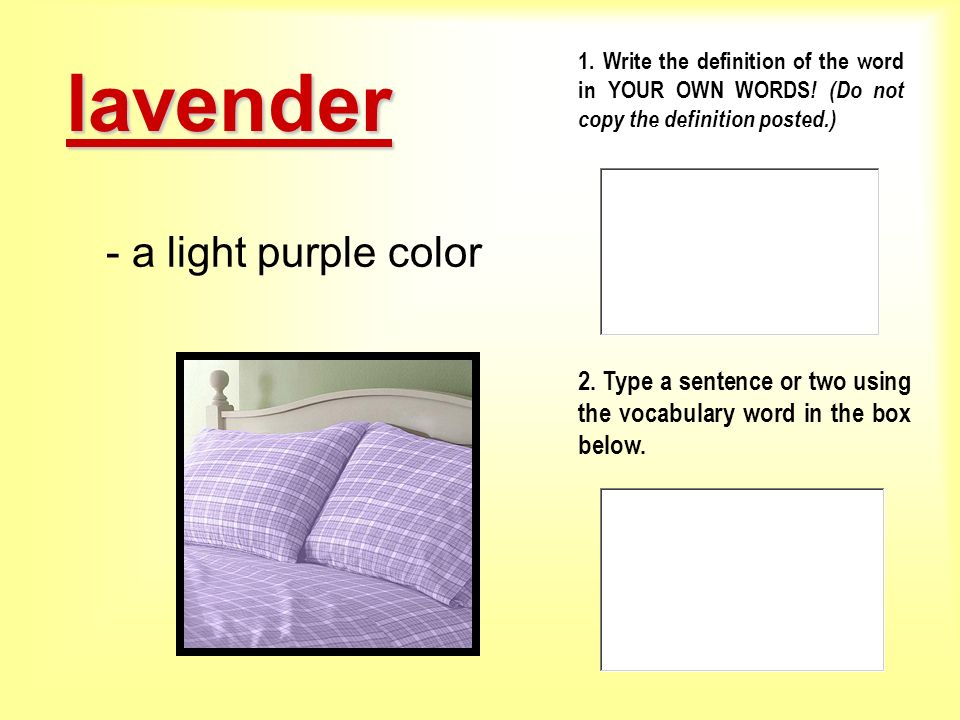 lavender - a light purple color