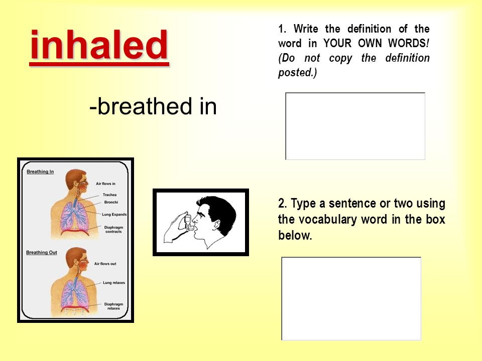 inhaled 1. Write the definition of the word in YOUR OWN WORDS! (Do not copy the definition posted.)