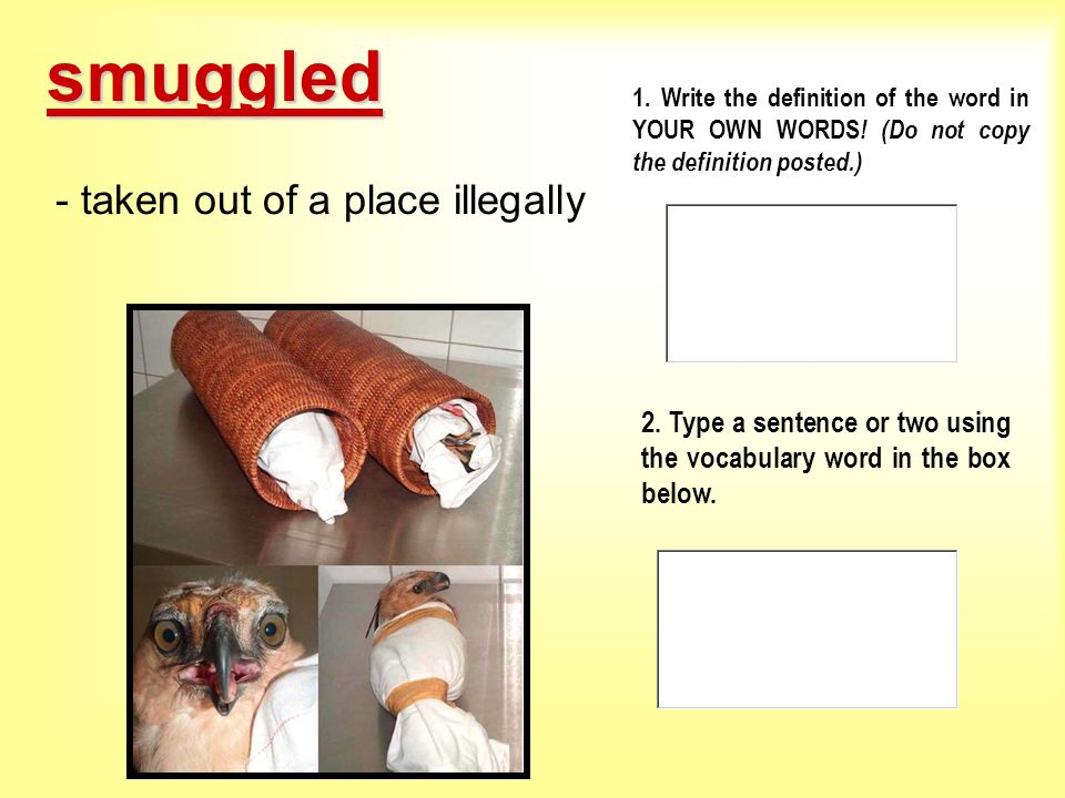 smuggled - taken out of a place illegally