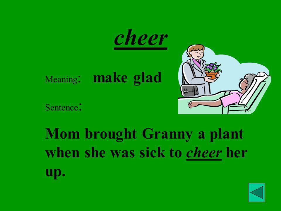 cheer Mom brought Granny a plant when she was sick to cheer her up.
