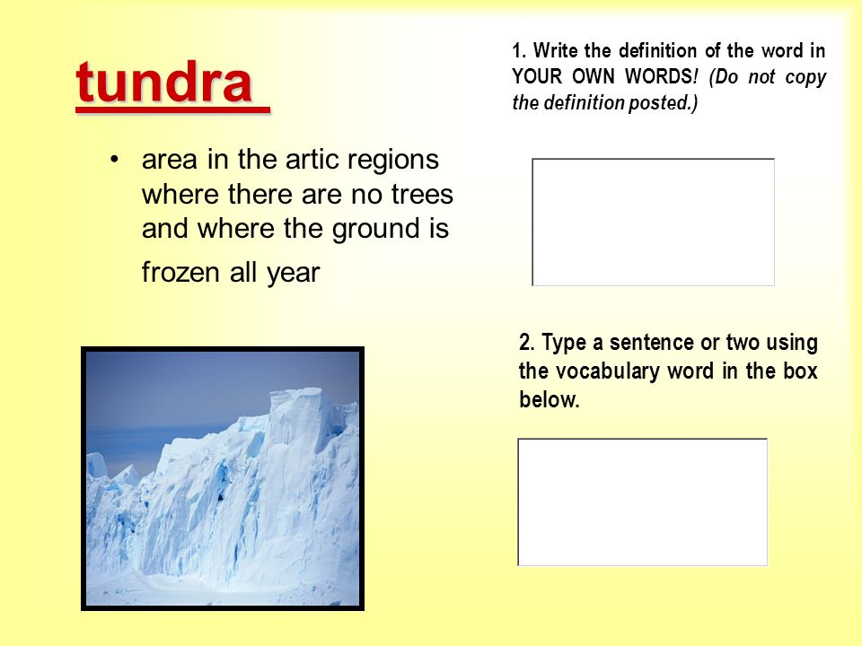 tundra 1. Write the definition of the word in YOUR OWN WORDS! (Do not copy the definition posted.)