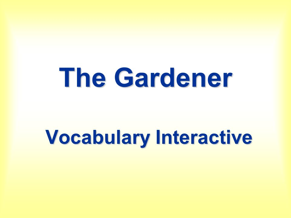 Vocabulary Interactive