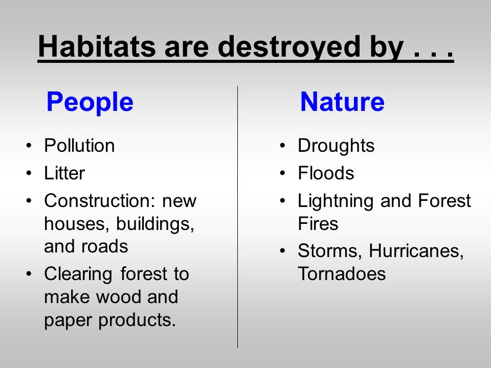 Habitats are destroyed by . . .