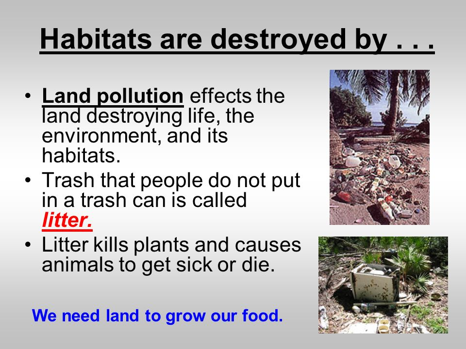 environmental pollution its effects on life and its remedies essay Sample paragraph on pollution, its kinds, causes and remedies paragraph on pollution and its types country like pakistan has one of the biggest problems is pollution, we have all sorts of pollution as we are self-sufficient in this sort of issues namely dust pollution, noise pollution and moral deficiency pollution.