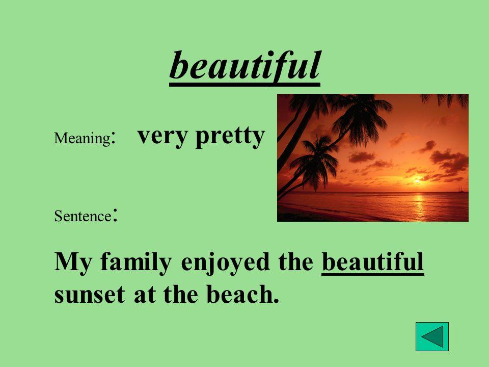 beautiful My family enjoyed the beautiful sunset at the beach.