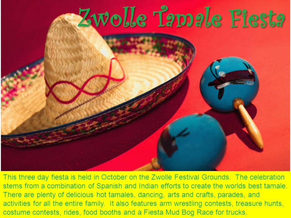 Zwolle Tamale Fiesta