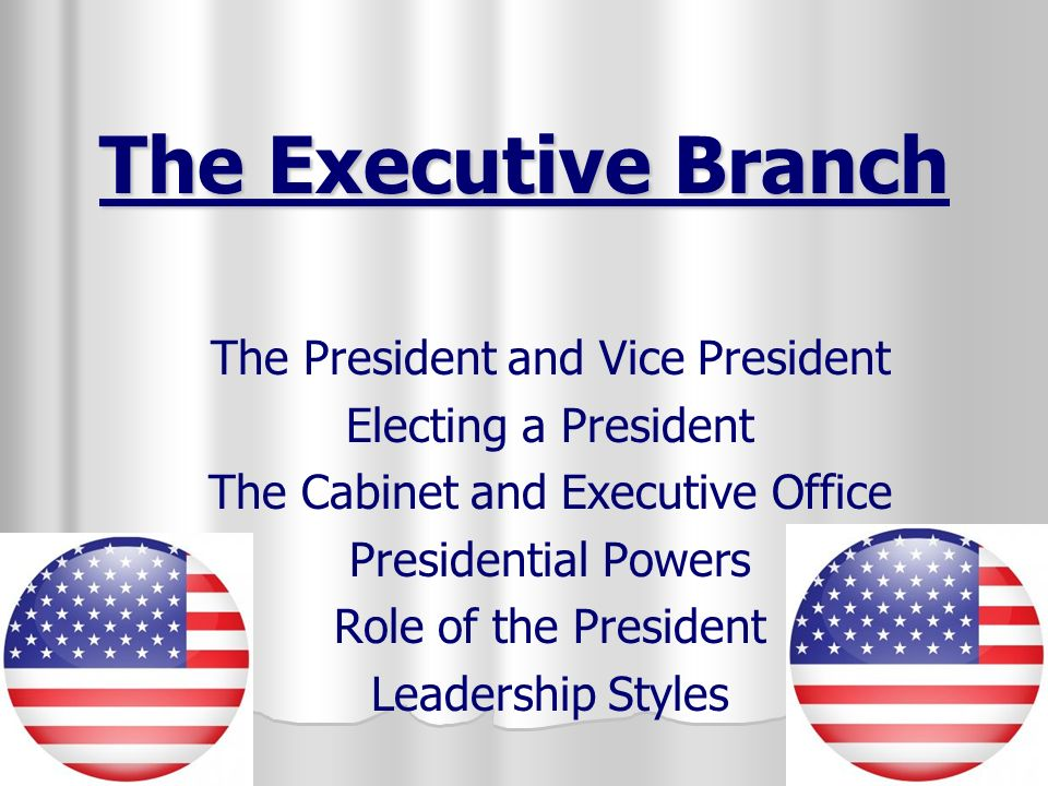 The Executive Branch The President and Vice President - ppt video ...