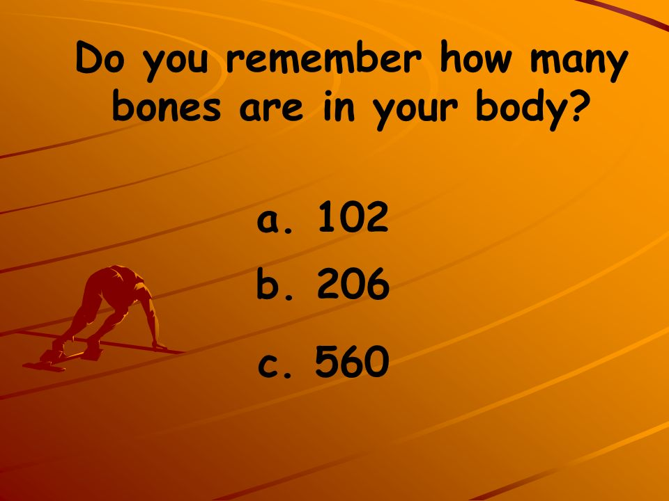 Do you remember how many bones are in your body