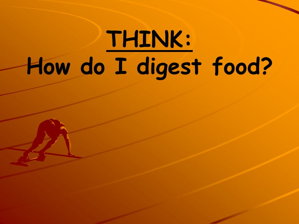 THINK: How do I digest food
