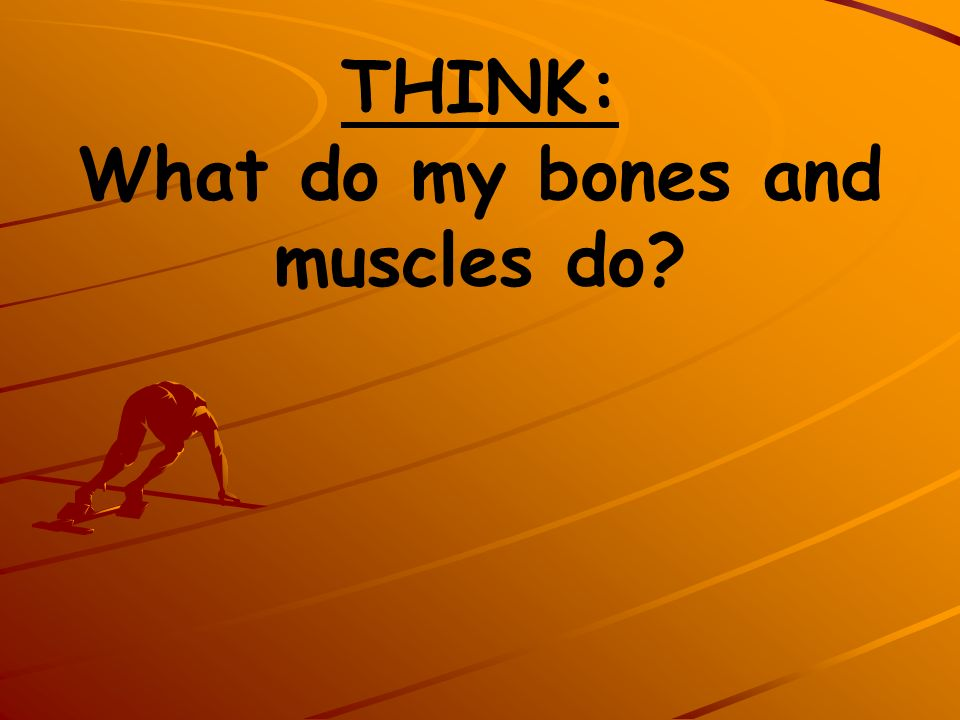 THINK: What do my bones and muscles do