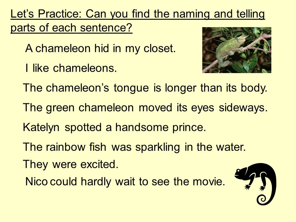 Let's Practice: Can you find the naming and telling parts of each sentence