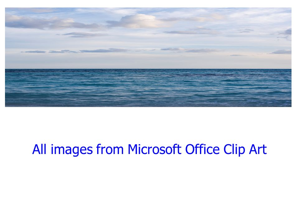 All images from Microsoft Office Clip Art