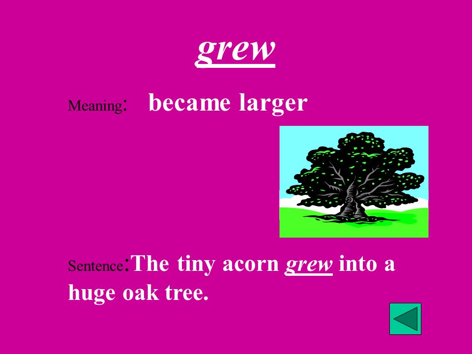 grew Meaning: became larger