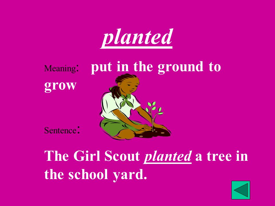 planted The Girl Scout planted a tree in the school yard.