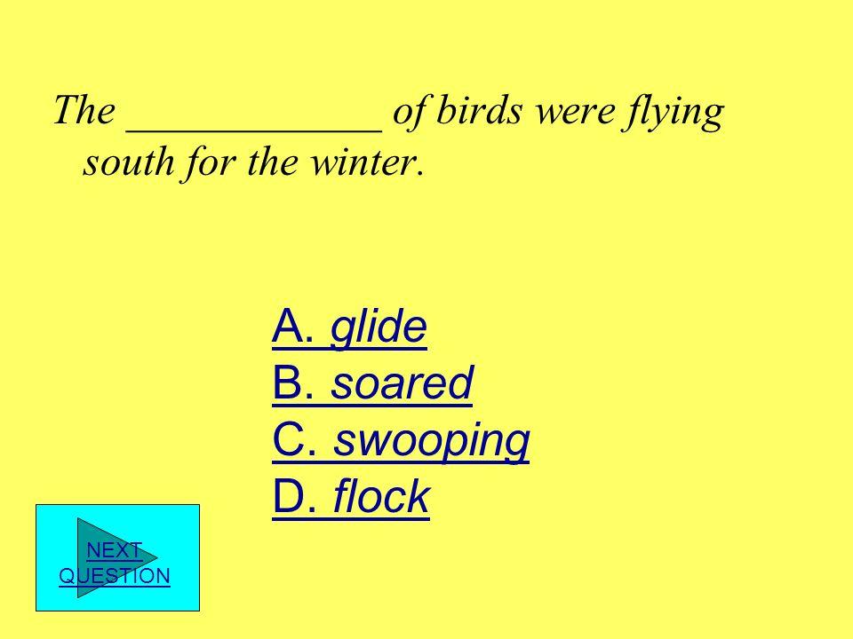 A. glide B. soared C. swooping D. flock