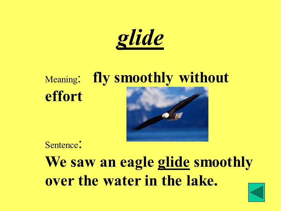glide Meaning: fly smoothly without effort