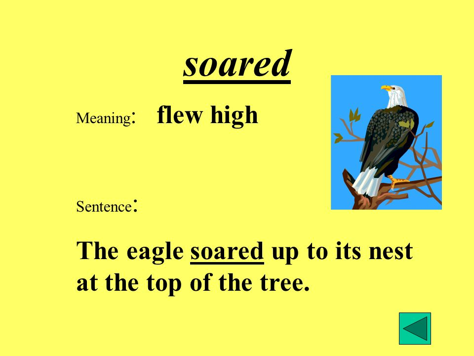soared The eagle soared up to its nest at the top of the tree.