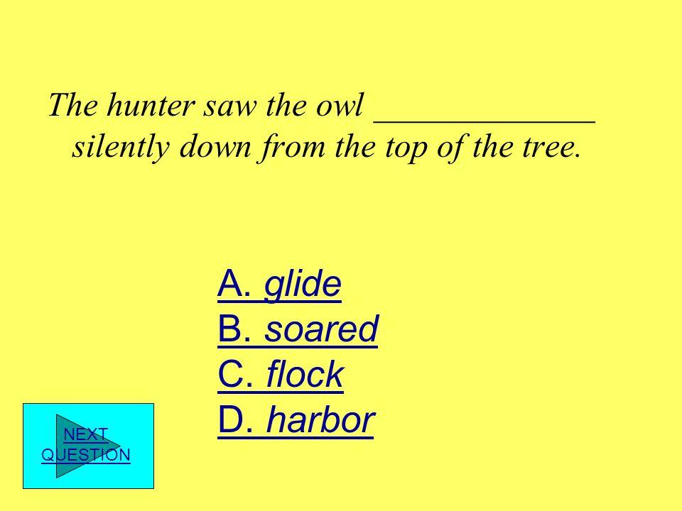 A. glide B. soared C. flock D. harbor
