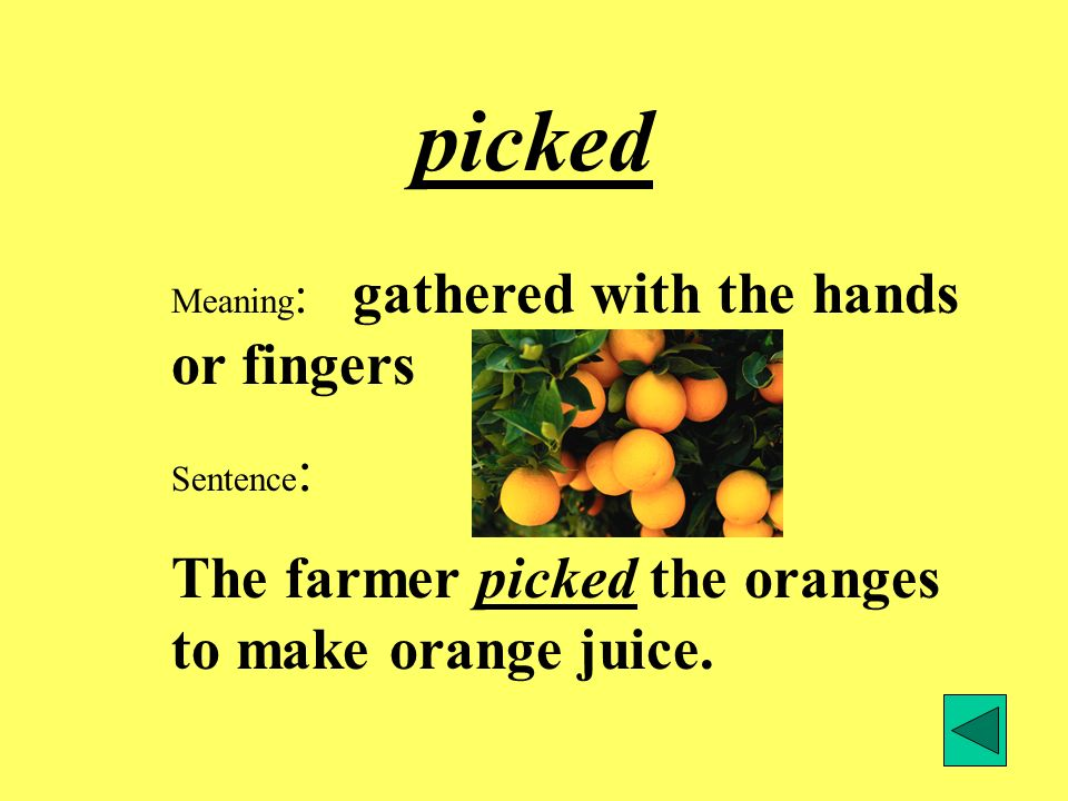 picked The farmer picked the oranges to make orange juice.