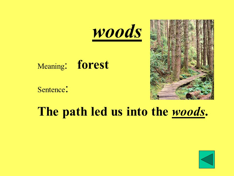 woods Meaning: forest Sentence: The path led us into the woods.