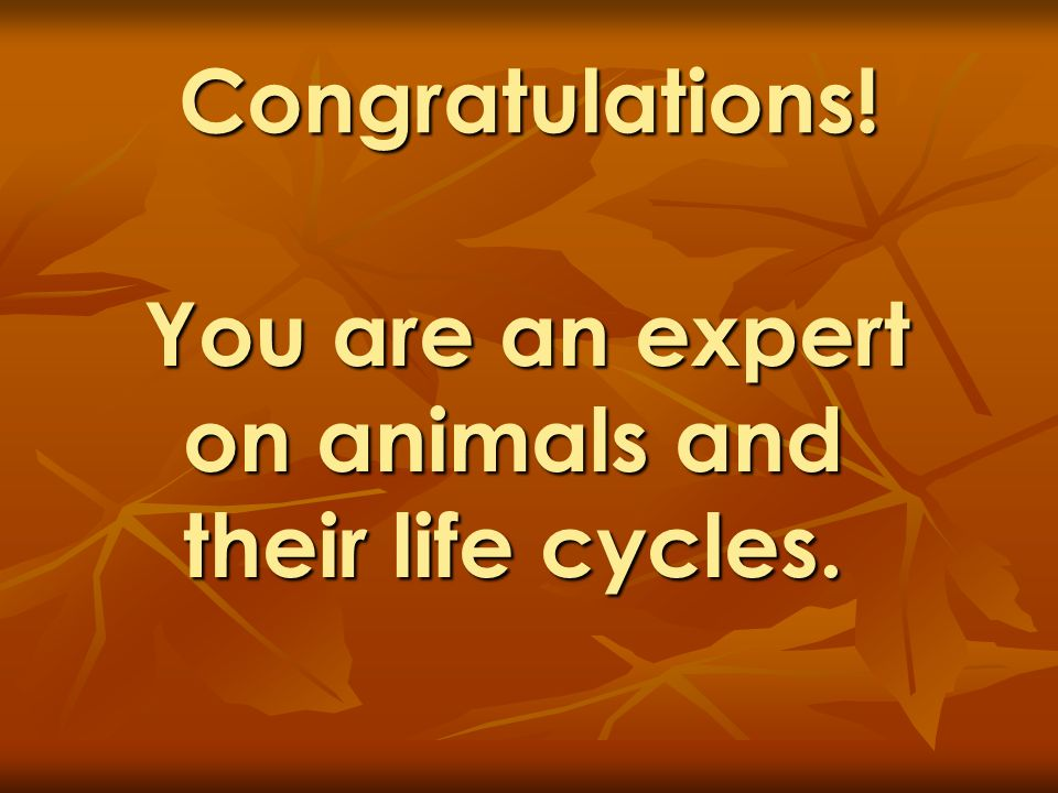Congratulations! You are an expert on animals and their life cycles.