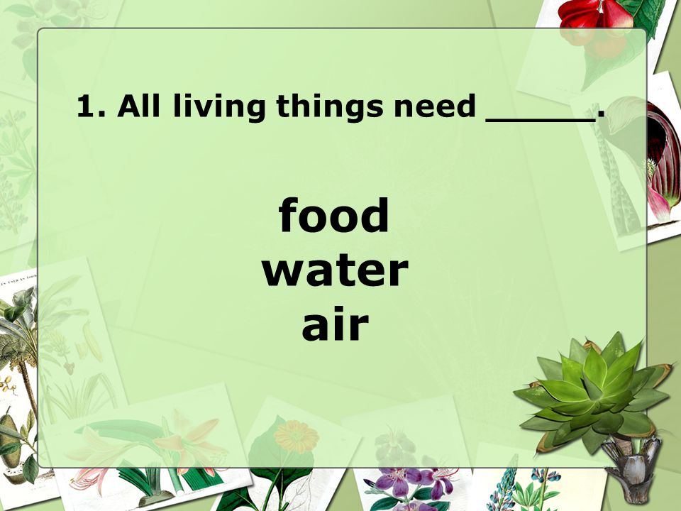 1. All living things need _____.