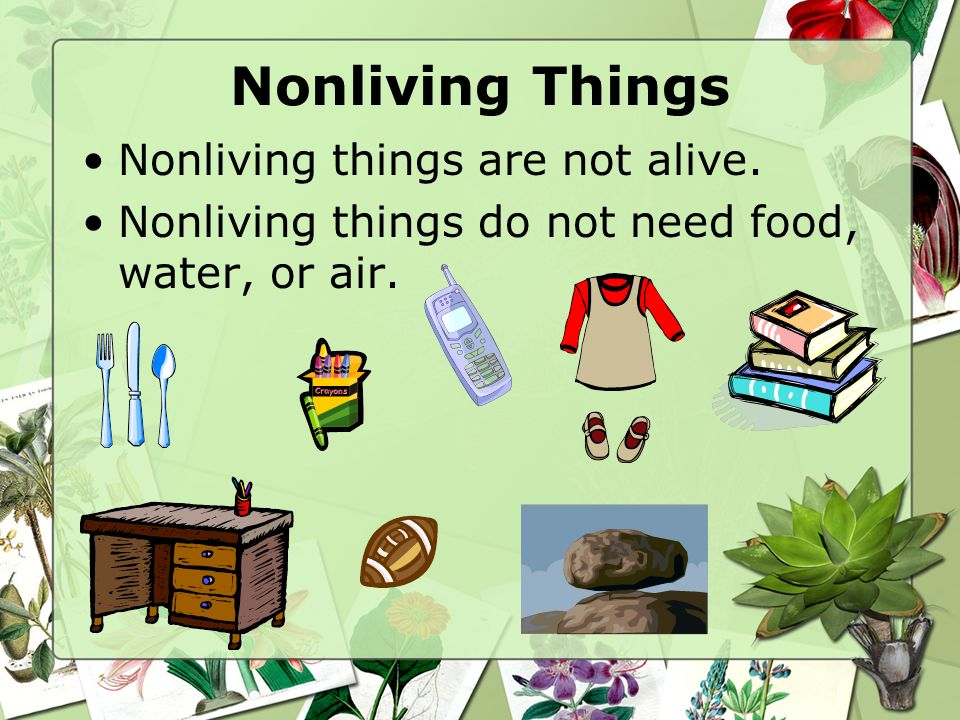 Nonliving Things Nonliving things are not alive.