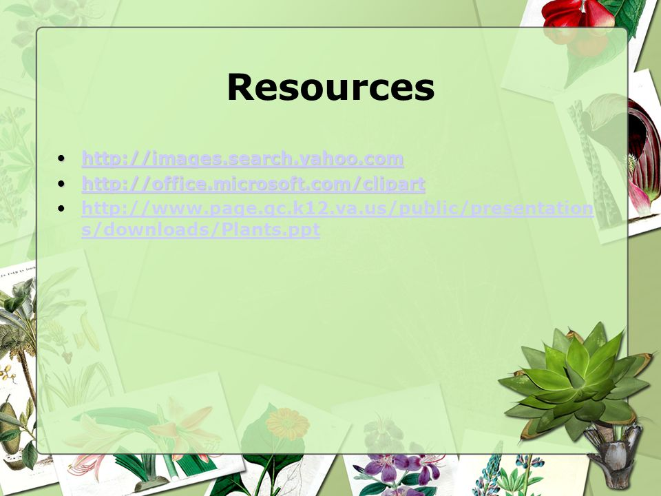 Resources http://images.search.yahoo.com